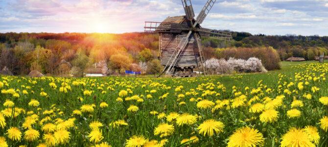 Ukraine is open for tourists!